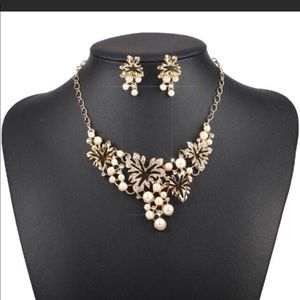 Jewelry - Fashion jewelry necklace & earring set.